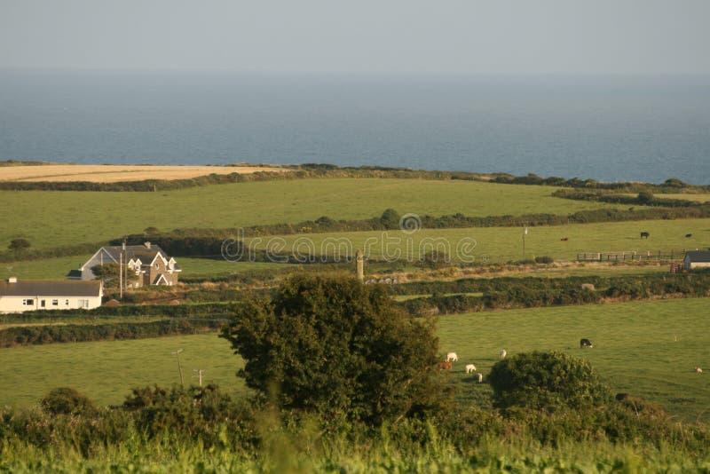Ирландский пейзаж лета стоковая фотография rf