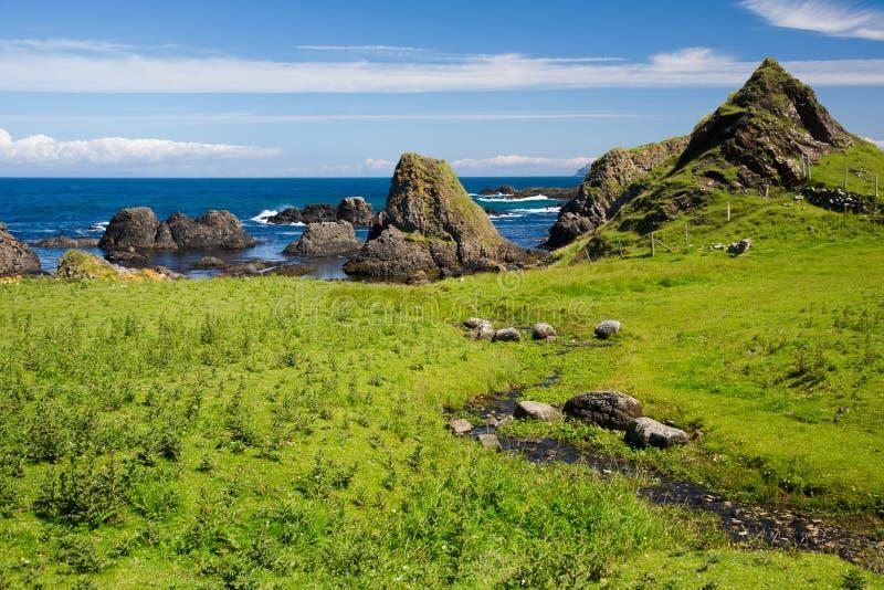 Ирландский пляж, зеленая трава покрыл поле, сторону моря, горизонт, дикие горные породы, естественную красоту стоковая фотография