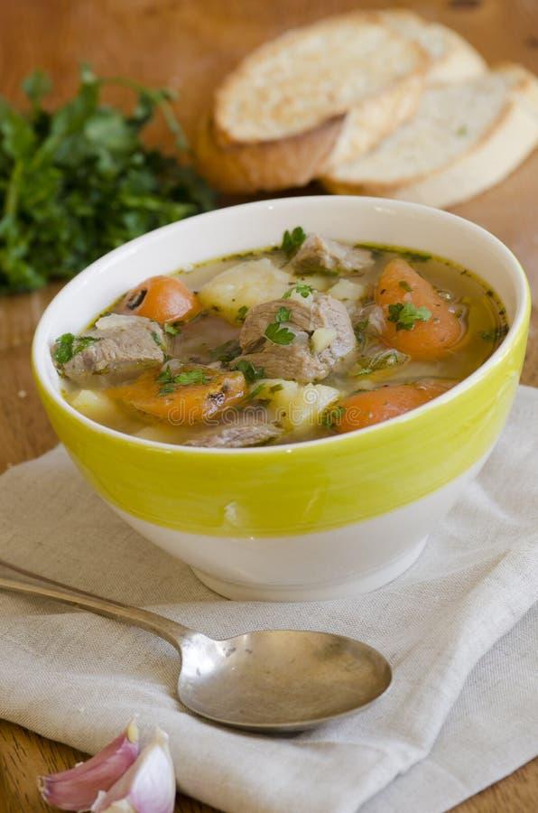 ирландский stew стоковое фото rf