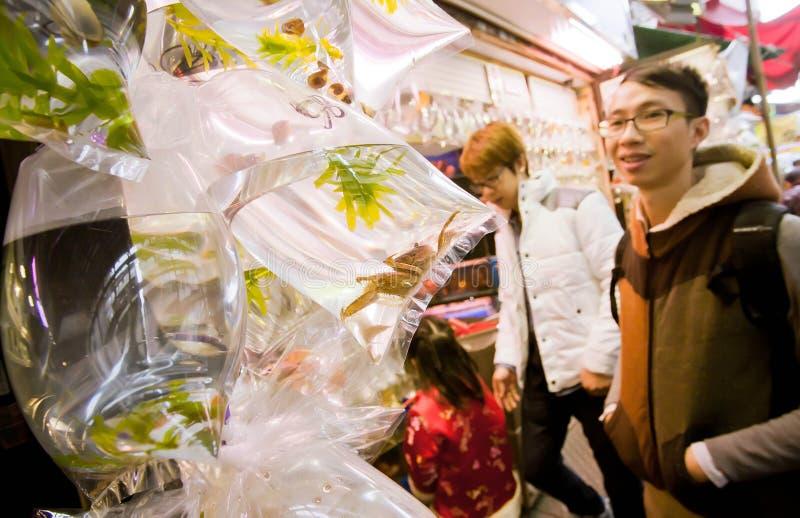 Искать молодого человека крабы в малых полиэтиленовых пакетах стоковая фотография rf
