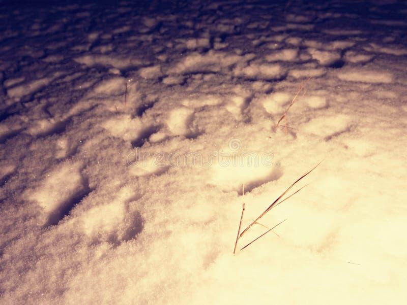 Искать персоны исчезл в ландшафте зимы глубокий снежок человека следов ноги стоковое фото