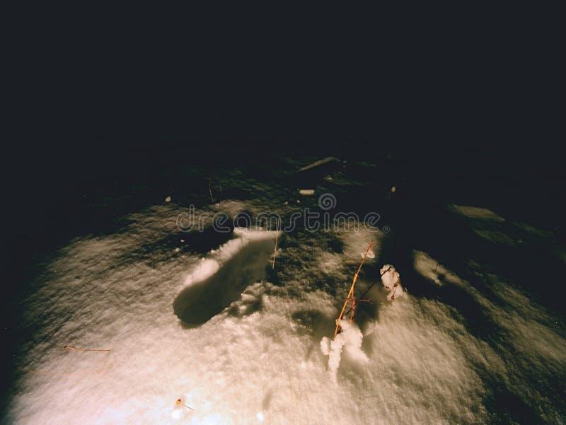 Искать персоны исчезл в ландшафте зимы глубокий снежок человека следов ноги стоковые фотографии rf