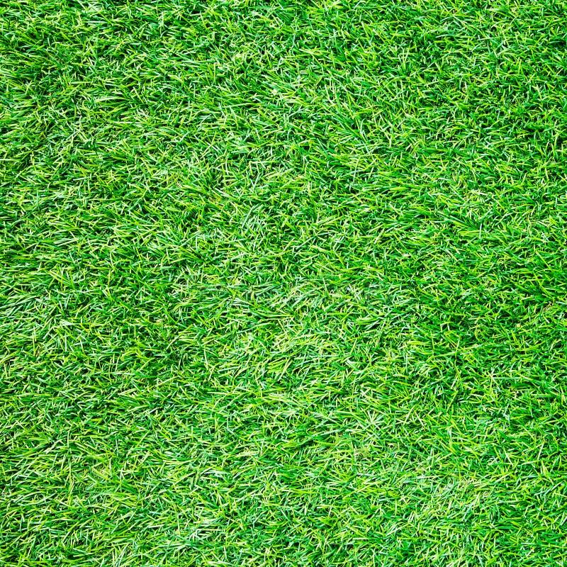 Искусственная текстура взгляда сверху поля травы стоковые фотографии rf