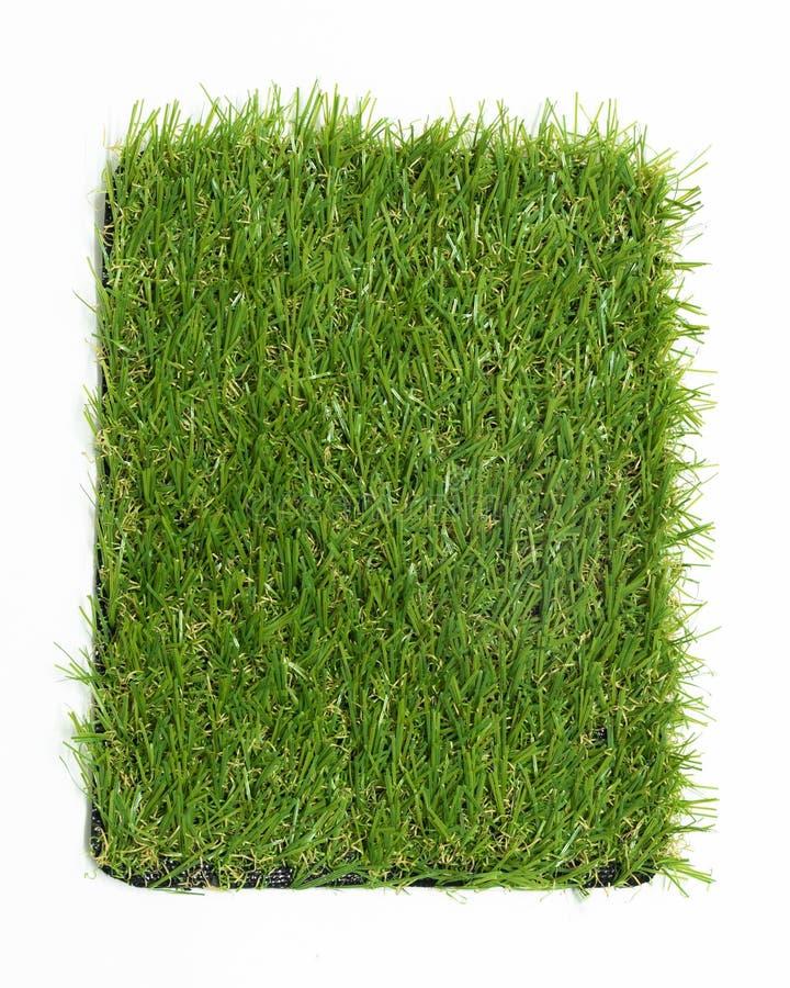Искусственная трава изолированная на белой предпосылке стоковое изображение rf