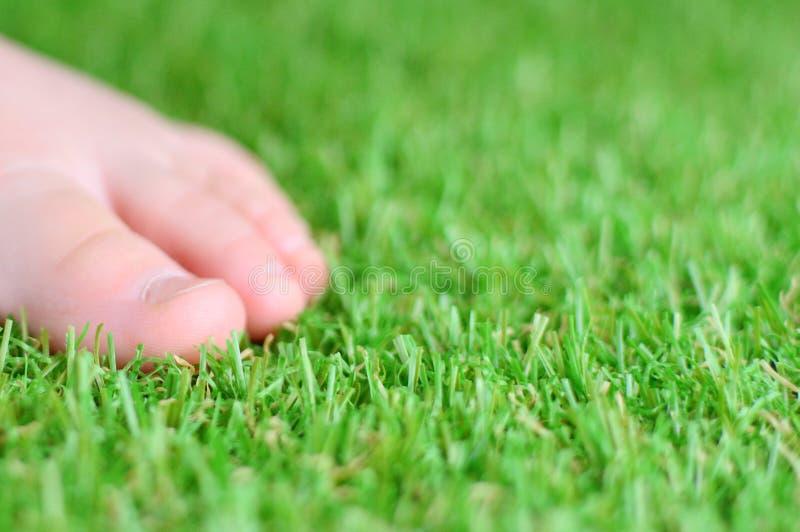 искусственная трава E стоковые фотографии rf