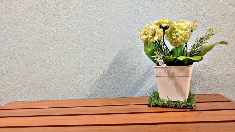 искусственним белизна предпосылки изолированная цветком стоковое фото