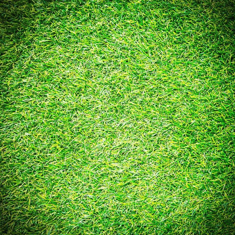 Искусственное поле травы стоковые фото