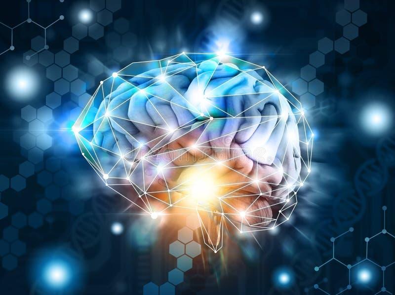 Искусственный интеллект, обрабатывая неврологические данные, мозг, облако стоковые фотографии rf