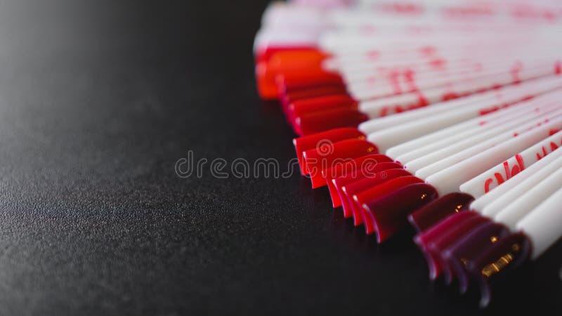 Искусство ногтя Установите ложных ногтей для маникюра Цветовая палитра для картины ногтя стоковые изображения