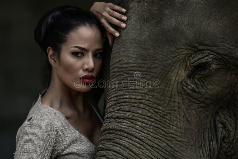 Искусство портрета красивых женщин и слонов стоковое фото