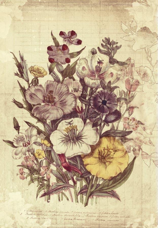 Искусство стены стиля цветков ботаническое винтажное с текстурированной предпосылкой бесплатная иллюстрация