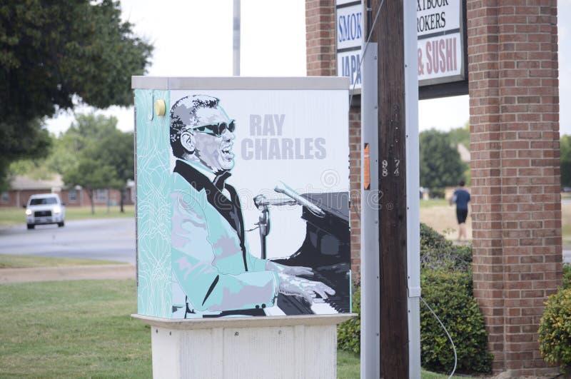 Искусство улицы Рэй Чарльза стоковые фото