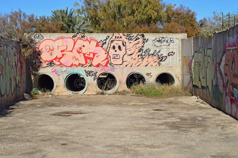 Искусство улицы черепа стоковые фотографии rf