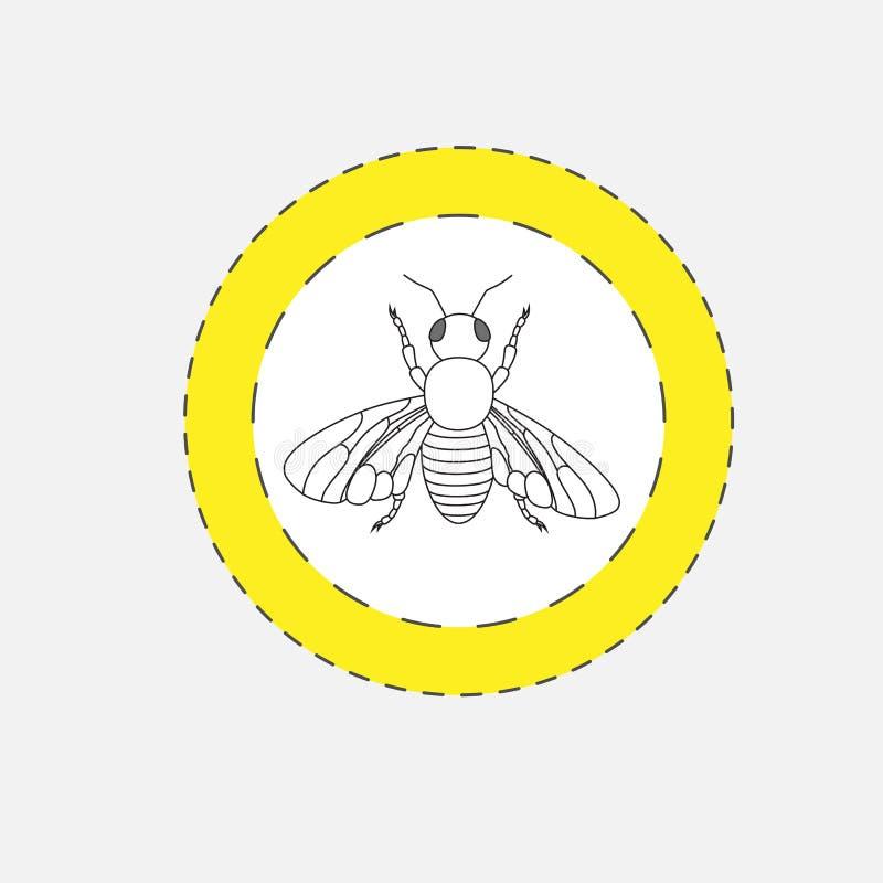 Искусство чертежа мухы иллюстрация штока