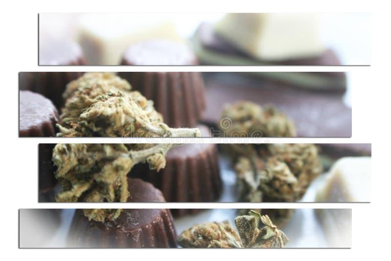 Искусство Edibles шоколада марихуаны с бутоном высококачественным стоковое изображение rf