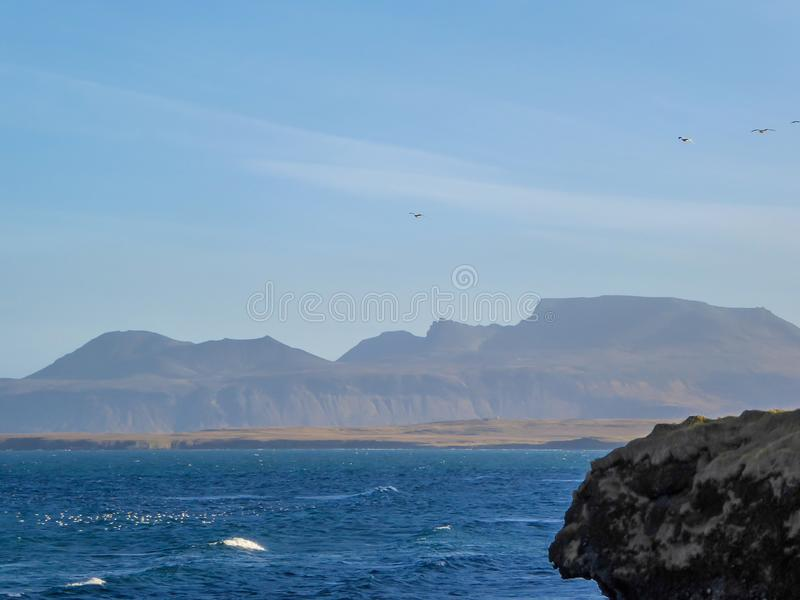 Исландия - волнистое море и чайки wirj гор летая сверх стоковые изображения rf
