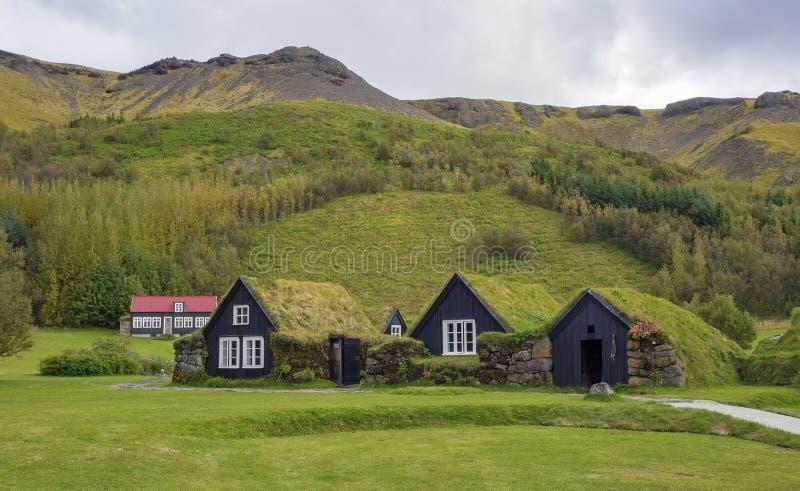 Исландские дерновин-настелинные крышу дома стоковое изображение rf
