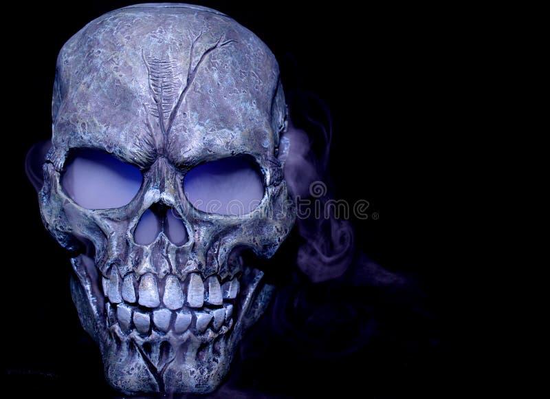 испаряться черепа стоковое фото rf