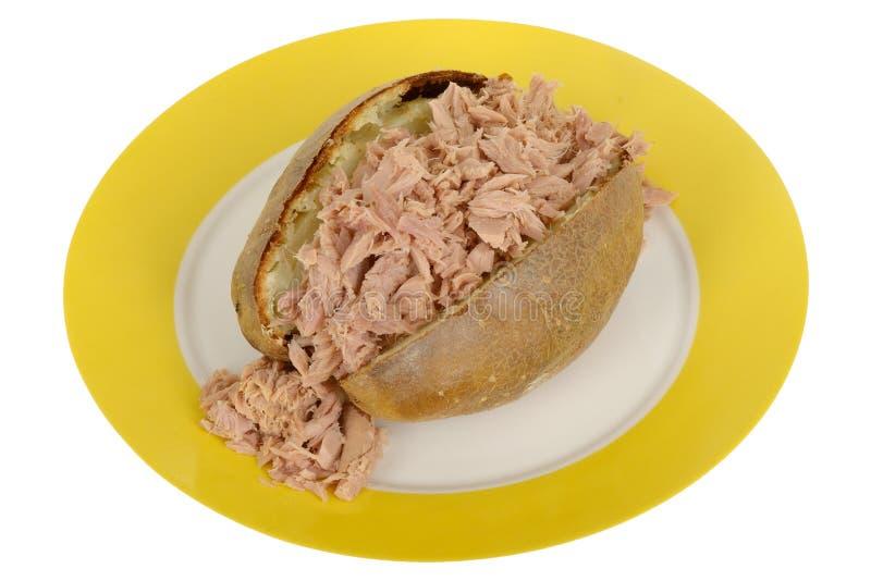 Испеченная картошка при мясо тунца заполняя на плите стоковая фотография rf