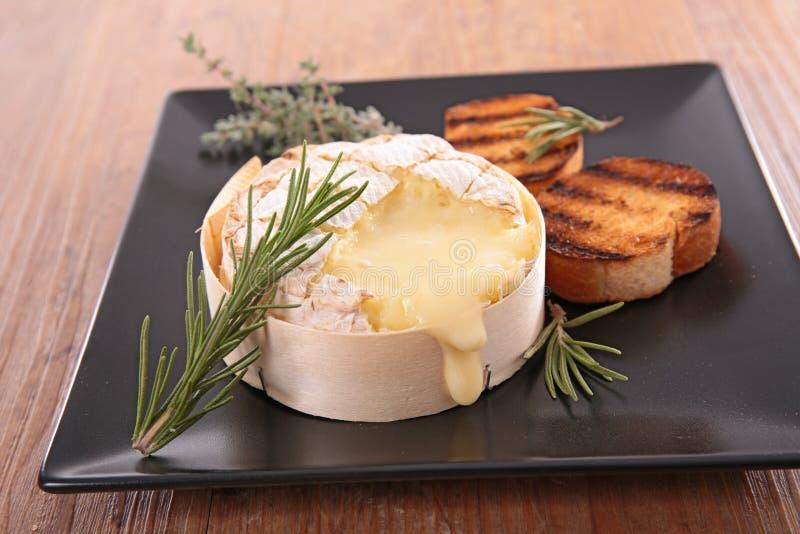 испеченный camembert стоковое фото rf