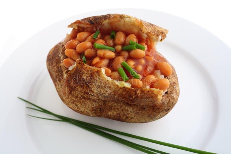 испеченный russet картошки chives фасолей стоковые изображения