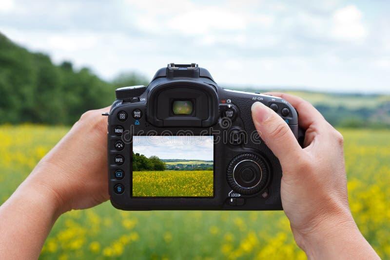 Используя камеру dslr для того чтобы принять фото стоковые изображения rf