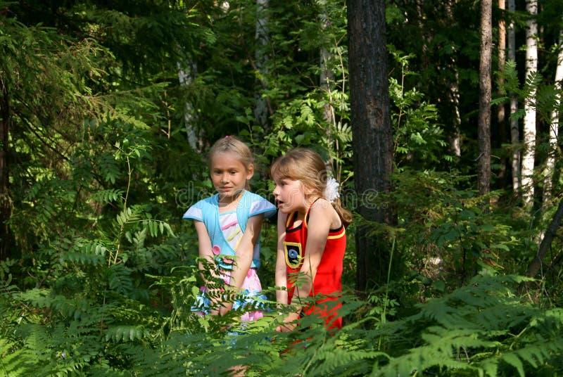 испуганные дети деревянные стоковое фото rf