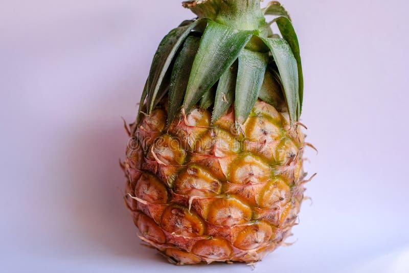 Испытание помадки размера ананаса Азии мини стоковое фото rf