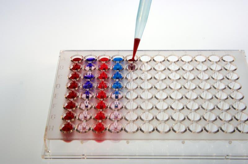 испытание microplates стоковые фото