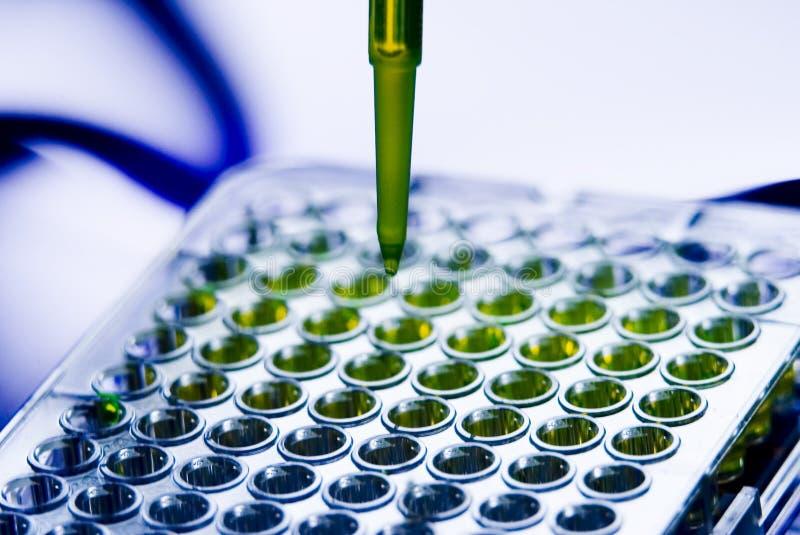 Испытательная лаборатория пипетки подноса образца больницы медицинская стоковое фото
