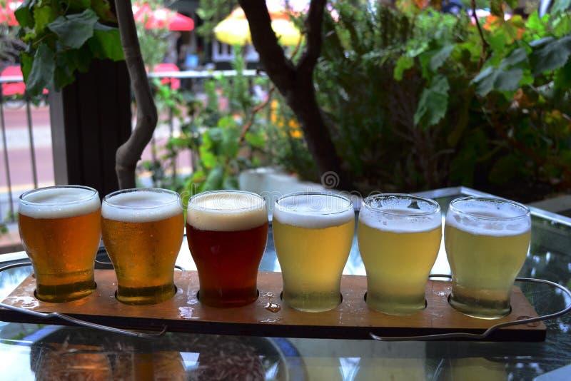 Испытывать пива стоковая фотография