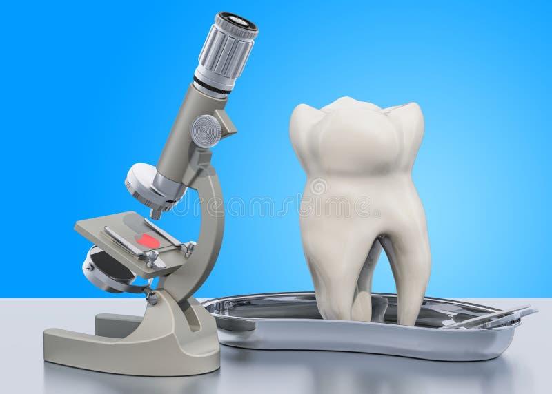 Исследование и диагностики концепции заболеванием зубов Микроскоп лаборатории с человеческим зубом, переводом 3D иллюстрация штока