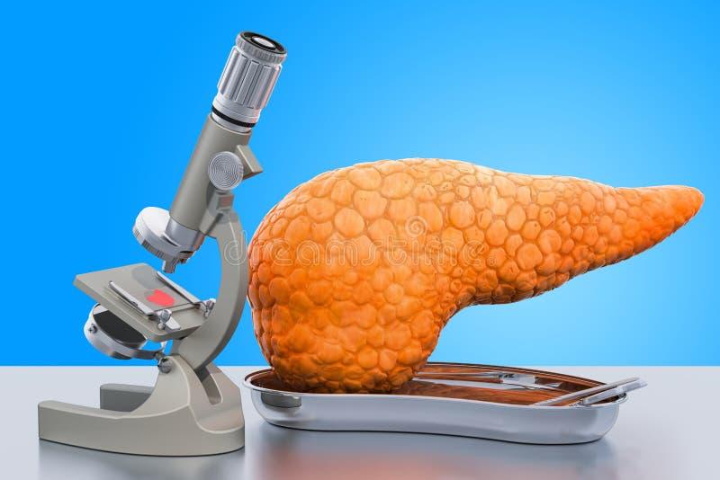 Исследование и диагностики поджелудочной концепции заболеванием Микроскоп лаборатории с человеческим панкреасом, переводом 3D бесплатная иллюстрация