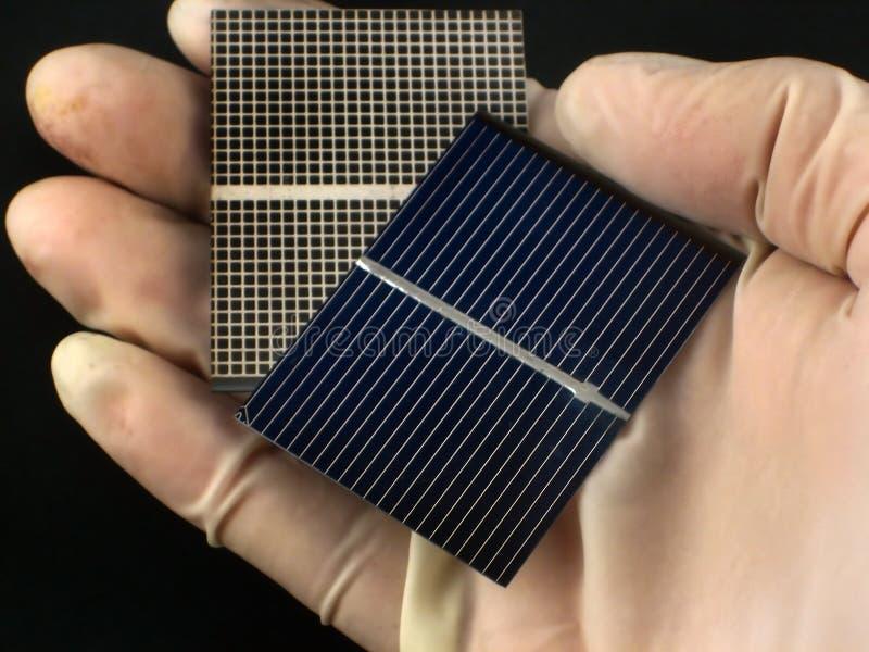 исследование клетки солнечное стоковая фотография rf