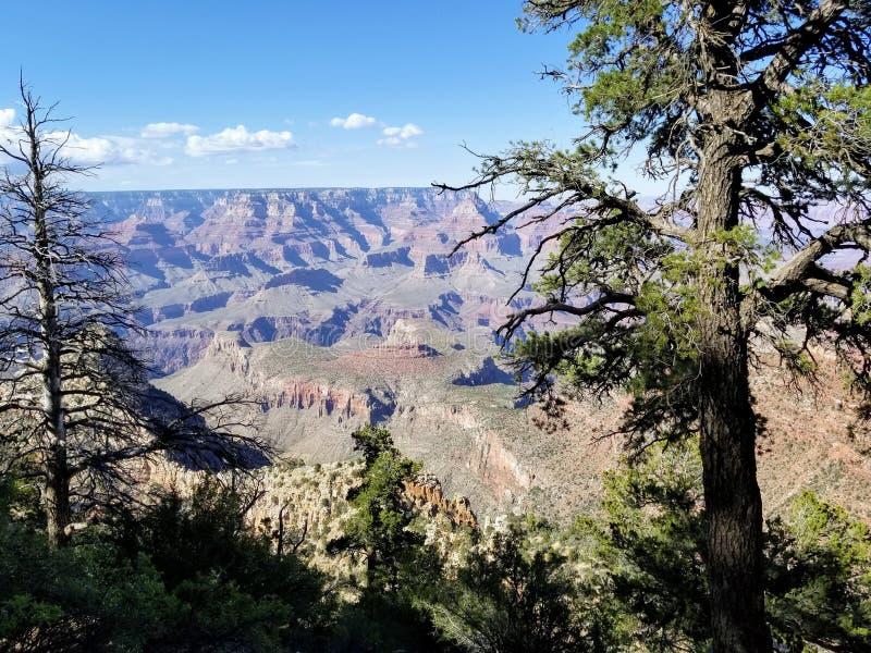 Исследуя гранд-каньон Аризона США стоковое фото