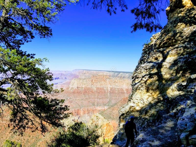 Исследуя гранд-каньон Аризона США стоковое изображение