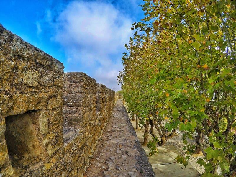Исследуя древняя стена стоковое изображение