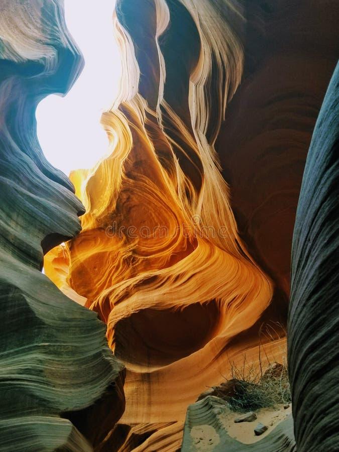 Исследуя каньон Аризона США антилопы стоковое изображение