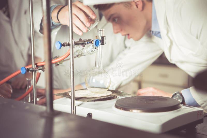 Исследователь молодого разработчика медицины фармацевтический Профессор университета показывая правильную процедуру intern Превра стоковая фотография