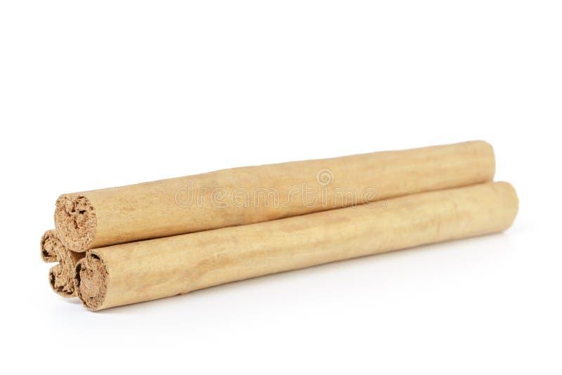 Истинные изолированные ручки циннамона Цейлона, стоковое фото