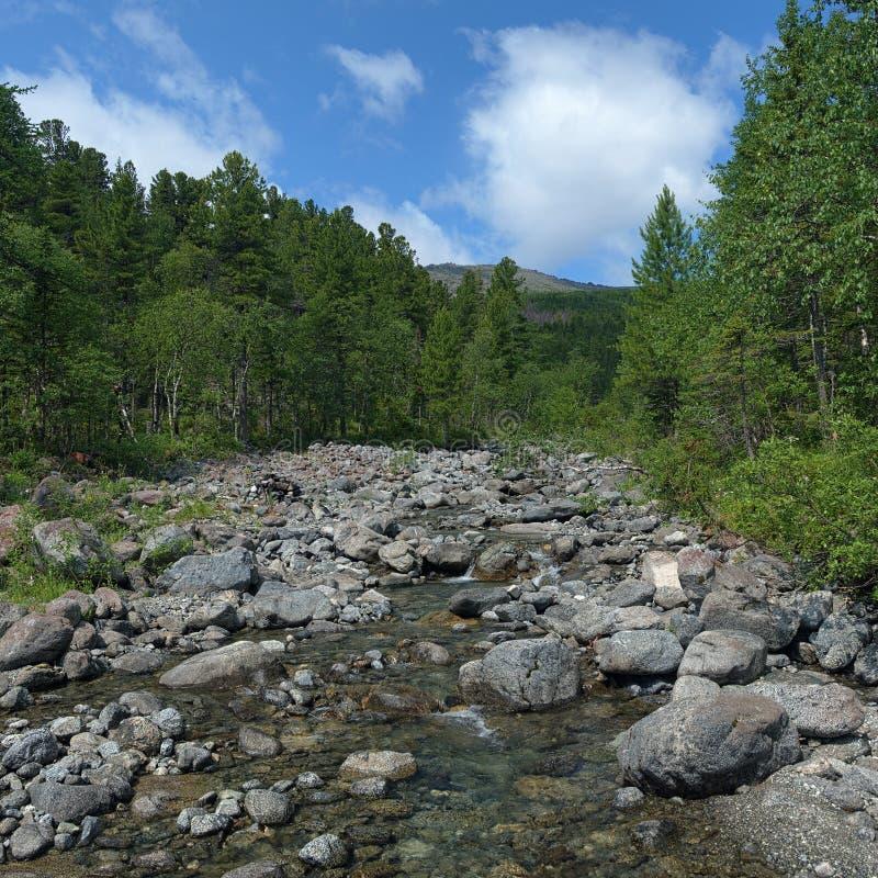 Исток реки Serebryanka в северном Ural Mo стоковое фото
