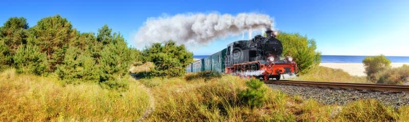 Исторический немецкий поезд пара весной, Rugen, Германия стоковая фотография