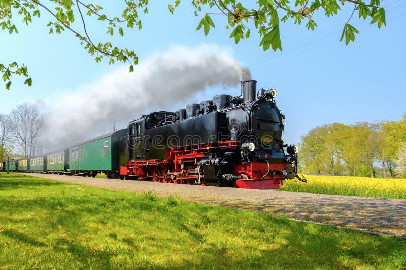 Исторический немецкий поезд пара проходит через поля в sprin стоковое изображение