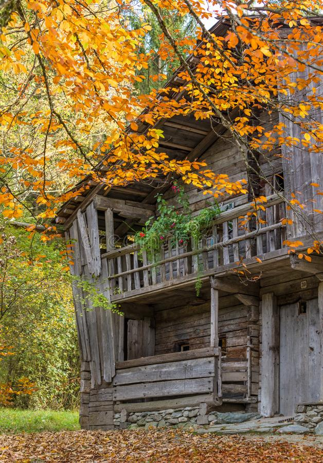 Исторический сельский дом амбара в горных вершинах, цветах осени стоковые фотографии rf