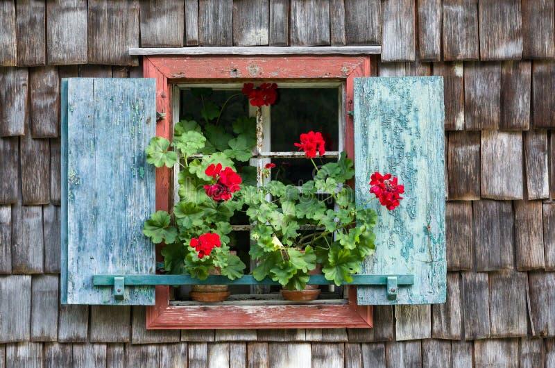 Историческое окно сельского дома с красными гераниумами стоковое фото