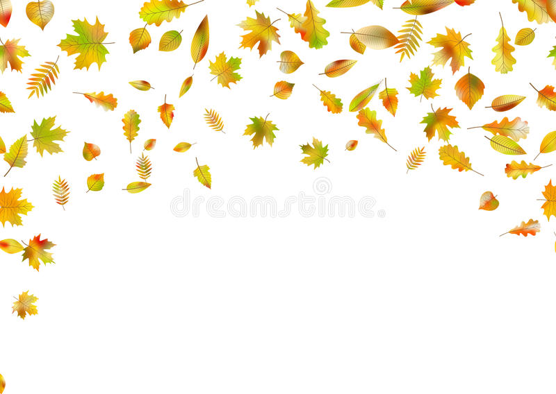 листья осени падая Вектор EPS 10 иллюстрация вектора