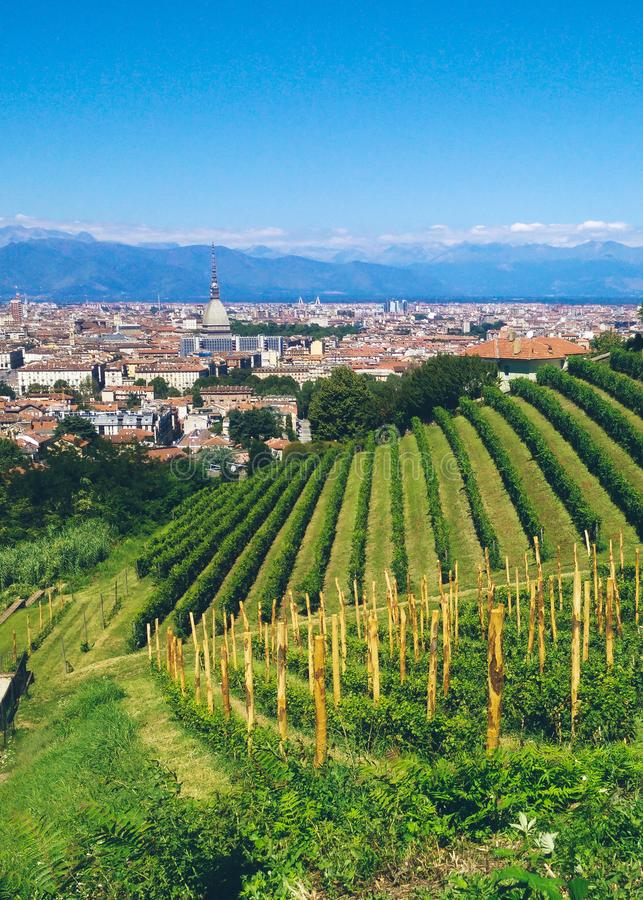 Италия torino стоковое фото
