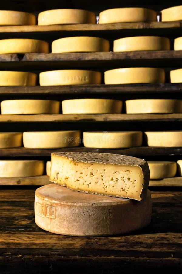 Итальянский сыр стоковая фотография rf