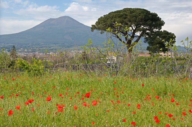 Италия pompeii стоковое изображение