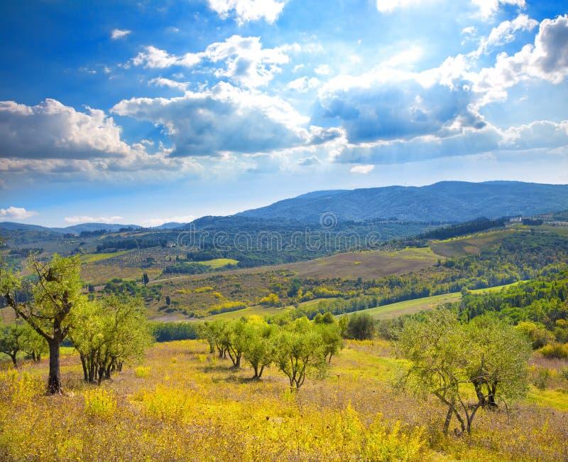 итальянский ландшафт сельский стоковое изображение